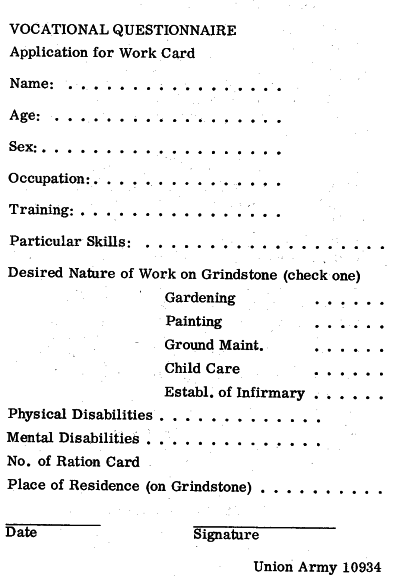 Vocational questionnaire / application for work card